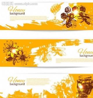 蜂蜜設計圖片