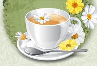 菊花茶圖片